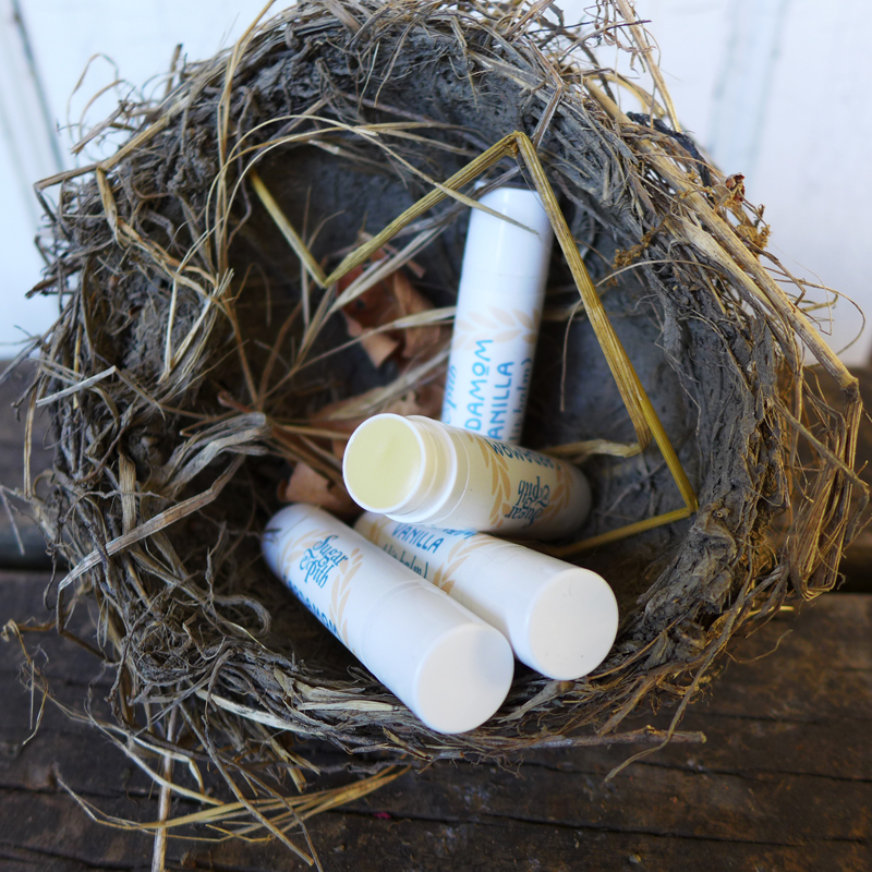 Sugar and Pith Cardamom Calendula lip balm, four tubes lip balm with one cap off nestled in a bird's nest
