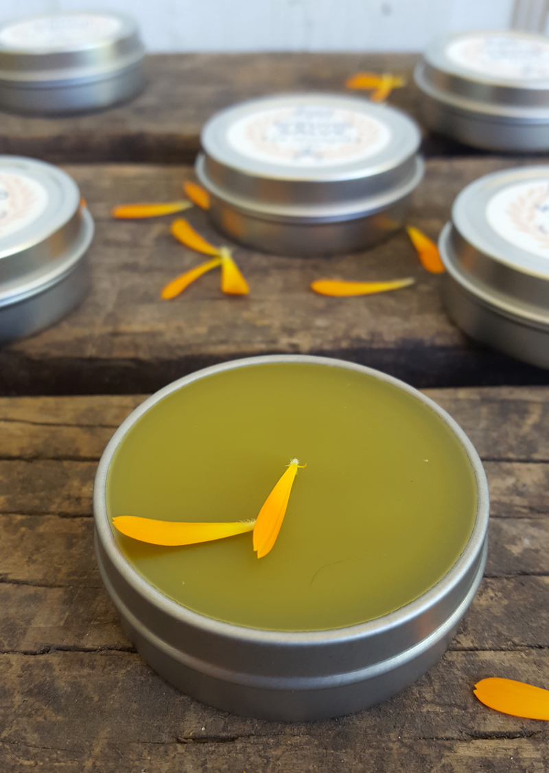 Sugar and Pith, Wound Salve, close up of open tin of wound salve with some calendula salve on it, more tins in the backgroun, all sitting on rustic wood surface.